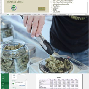 Cannabis Cultivation + Extraction/ Manufacturing + Dispensary/ Store Financial Model