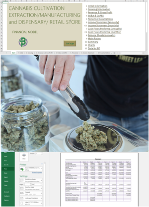 cannabis cultivation manufacturing retail financial model