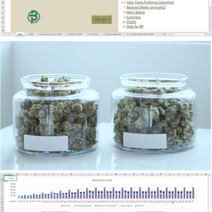 Cannabis Dispensary/Shop Financial Model