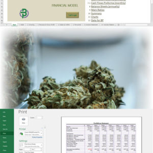 Cannabis Cultivation + Retail Store Financial Model