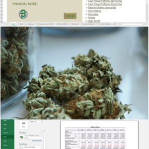 Cannabis Cultivation + Dispensary/ Retail Store Financial Model