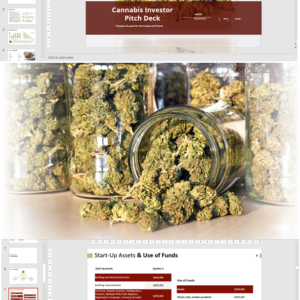 Cannabis Retail Investor Pitch Deck Template